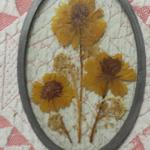 "Dried Flowers in Oval Shaped Glass.  Beautiful piece.  Measures 4"" x 6.5"".  Pre-owned & in excellent condition.  $12.00 obo"